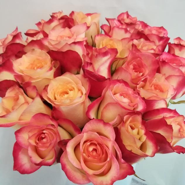 Букет из чарующих 11 роз